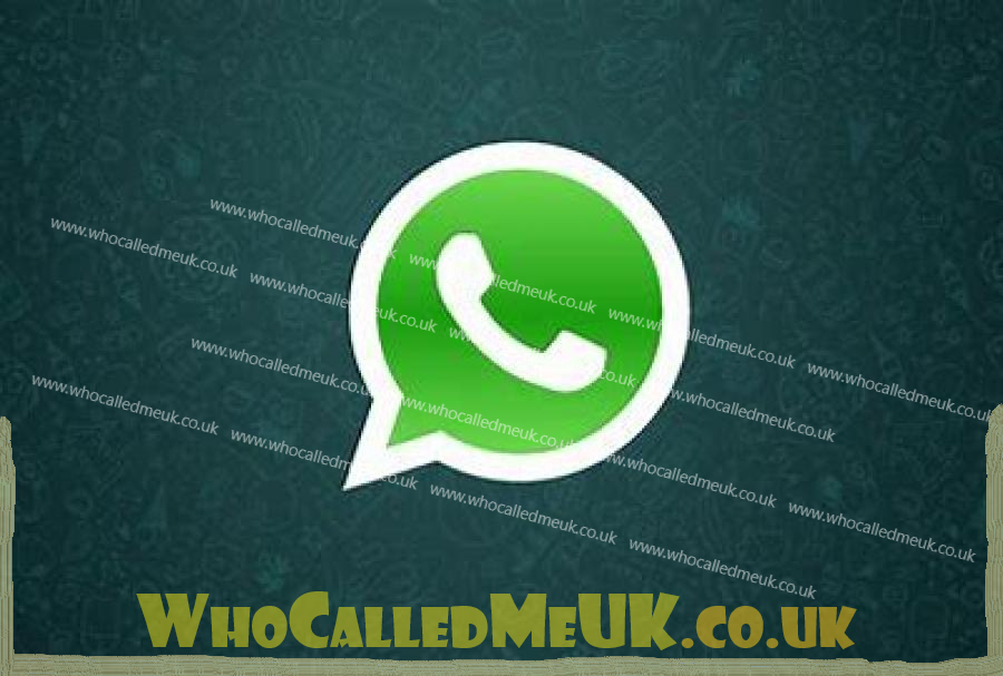 WhatsApp, iOS, multimedia, Android, application